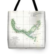 Coast Survey Chart Or Map Of The Savannah River Ans Savannah Georgia Tote Bag