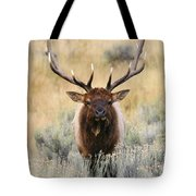 Coming Head On Tote Bag