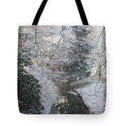 Creek Reflection Tote Bag