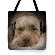 Don't Disturb Me Tote Bag