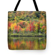 Echo Lake Fall Reflections Tote Bag