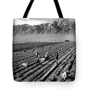 Farm Workers And Mount Williamson Tote Bag