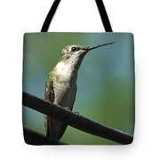 Girl On A Wire Tote Bag
