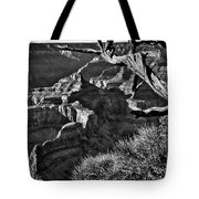 Grand Canyon Hermit View Tote Bag