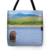 Grizzly Bears Looking At Each Other In Moraine River In Katmai Np-ak  Tote Bag
