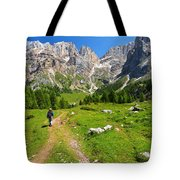 Hiking In Contrin Valley Tote Bag