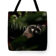I Can See You  Mr. Raccoon Tote Bag