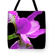 Japanese Iris Violet Black  Tote Bag