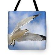 Jekyll Island Seagull Tote Bag
