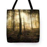 Kings Wood In Autumn Tote Bag
