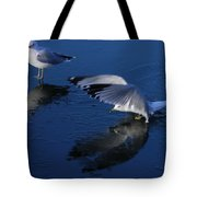 Landing On Icy Water Tote Bag