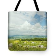 Large Blueberry Field With Mountains And Blue Sky In Maine Tote Bag by Keith Webber Jr