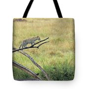 Leopard Cub In Serengeti Tote Bag