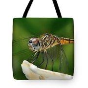Austrogomphus Dragonfly Tote Bag