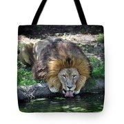 Lion Drinking Water Tote Bag