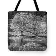 Long Pond On Mount Desert Island In Maine Tote Bag