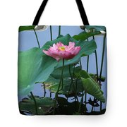 Lotus Flower At Calloway Tote Bag