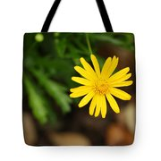 Marguerite Yellow Daisy Tote Bag