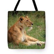 Masai Mara Lioness Tote Bag