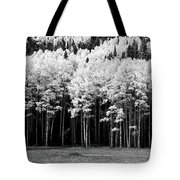 New Mexico Aspens Tote Bag