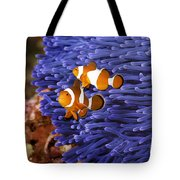 Ocellaris Clownfish Tote Bag