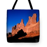 Park Avenue's Courthouse Towers Tote Bag