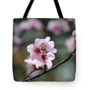 Peach Blossoms I Tote Bag