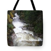 Pemigewasset River Franconia Notch Tote Bag