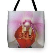 Phalaenopsis Orchid Closeup Tote Bag