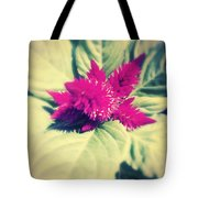A Blister And A Kiss . Tote Bag