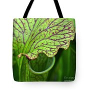 Pitcher Plants Tote Bag