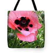 Poppy And Buds Tote Bag