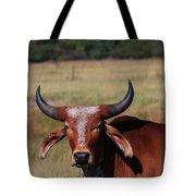 Red Brahma Bull In A Pasture Tote Bag by Robert D  Brozek