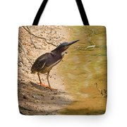 Shady Spot Tote Bag