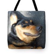 Silly Dawg Tote Bag