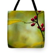 Spicebush With Red Berries Tote Bag