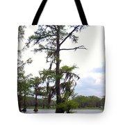 Cypress Trees Tote Bag