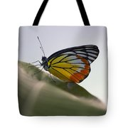 Thai Beauty On A Leaf Tote Bag
