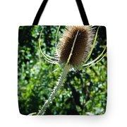 Thistle Plant Tote Bag