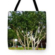 Trees In A Suburban Neighborhood In Summer Tote Bag