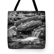 Waterfall Great Smoky Mountains Painted Bw    Tote Bag