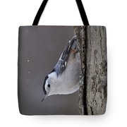 White-breasted Nuthatch Pictures 27 Tote Bag