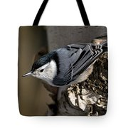 White-breasted Nuthatch Pictures 35 Tote Bag