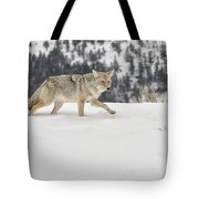Winter's Determination Tote Bag
