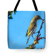 Yellow-rumped Warbler Tote Bag