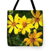 Yellow Texas Wildflowers Tote Bag