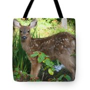 Young Fawn In The Grass Tote Bag