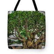 001 Bonsai Summer Show Buffalo Botanical Gardens Series Tote Bag