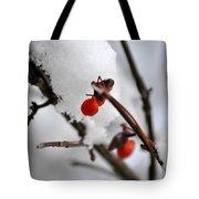 001 Frozen Berries Tote Bag
