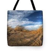 0010 Presque Isle State Park Series Tote Bag